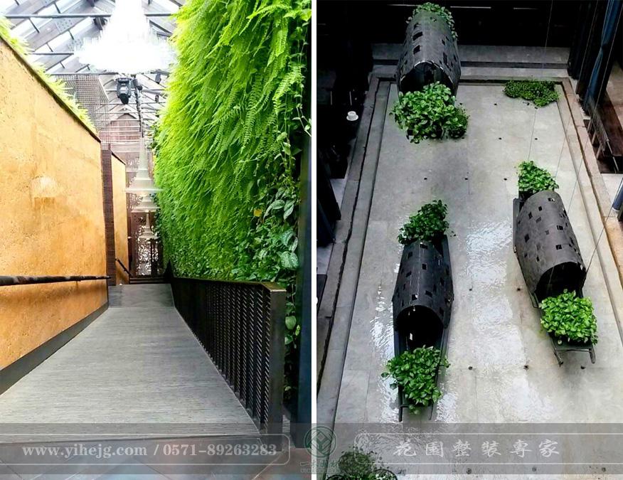 外婆家水景设计|景观绿化设计
