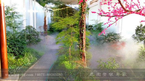 这样的室内庭院,简直让我尖叫!